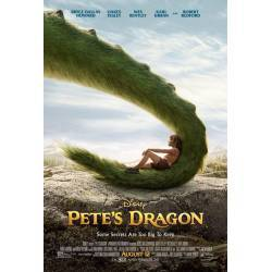 EL DRAGON DE PETE