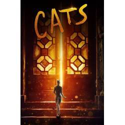 CATS -DVD Y USB-